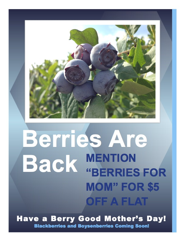 Berries for Mom