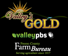 valleys_gold_menu_logo4